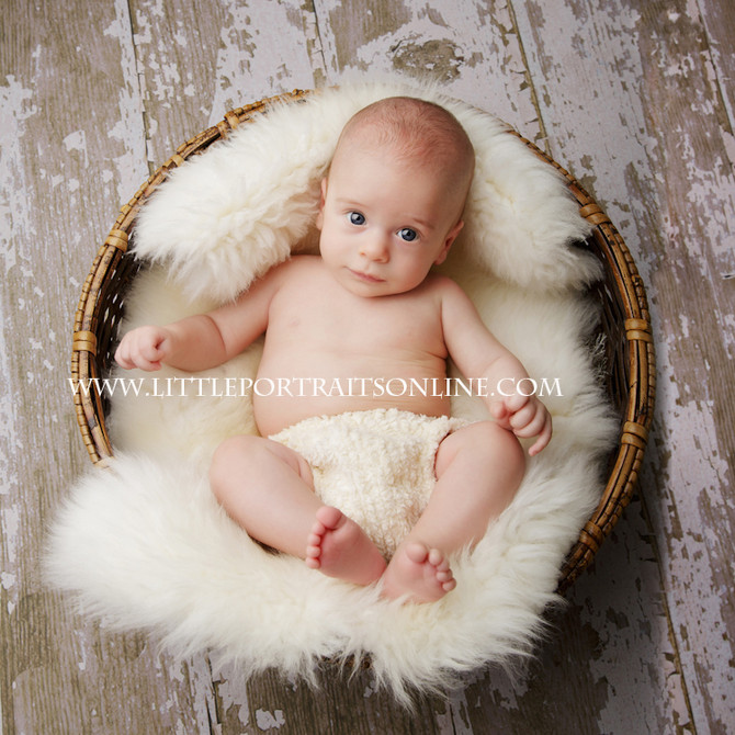 Colton | Lake County Baby Photographer
