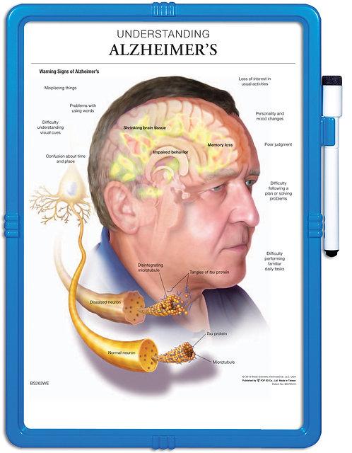 Understanding Alzheimer's - Wipe-off Easel