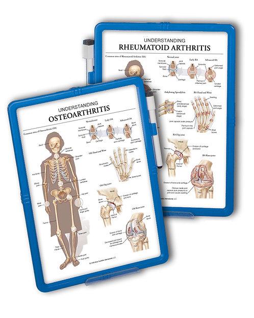 Osteoarthritis & Rheumatoid Arthritis  - Wipe-off Easel