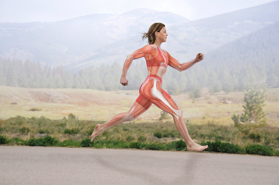 Bodyscientific_1_Runner.jpg