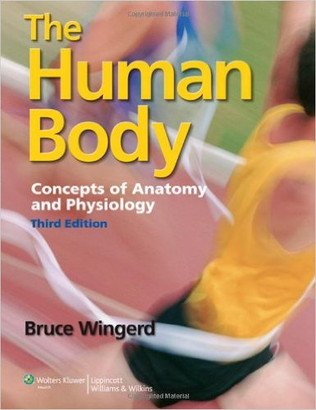 WKH-020_Wingerd_Human Body A&P.jpg