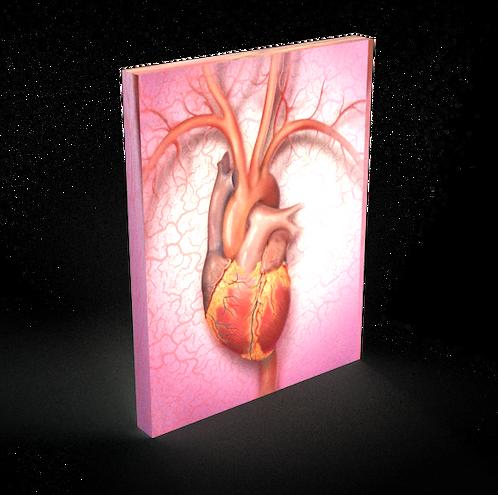 Heart - Fine Art