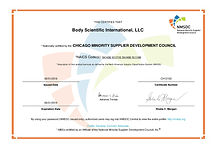 2018-0924_BSI_Chicago Minority Business