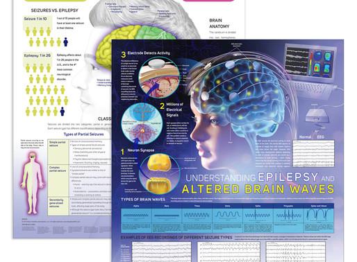 Brain Waves Chart