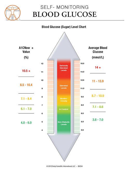Self-monitoring Blood Glucose - Anatomical Wall Chart
