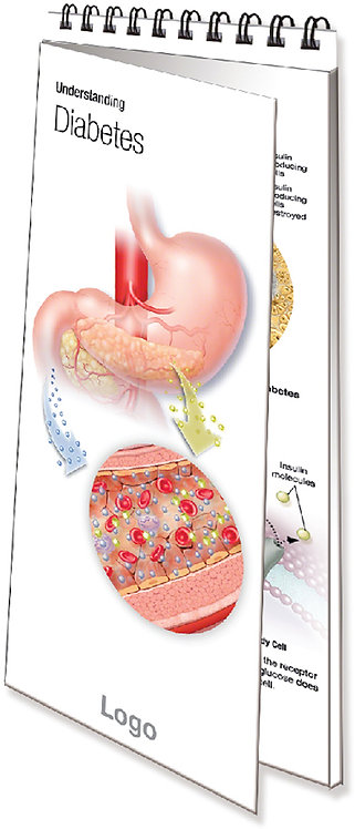 Understanding Type 2 Diabetes - Spiral-bound Pamphlet