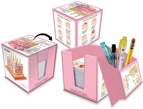 Anatomy of Skin - Memo box