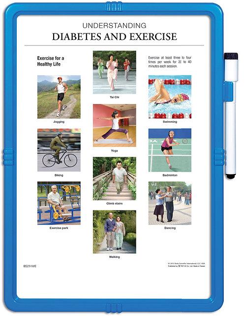 Understanding Diabetes & Exercise - Wipe-off Easel