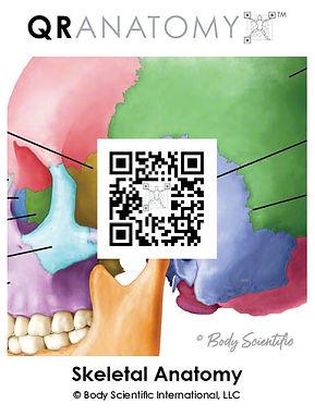 QR-Anatomy Cards_05.jpg