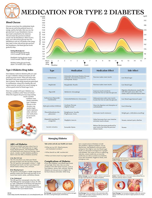 Medications for Type 2 Diabetes - Anatomical Wall Chart