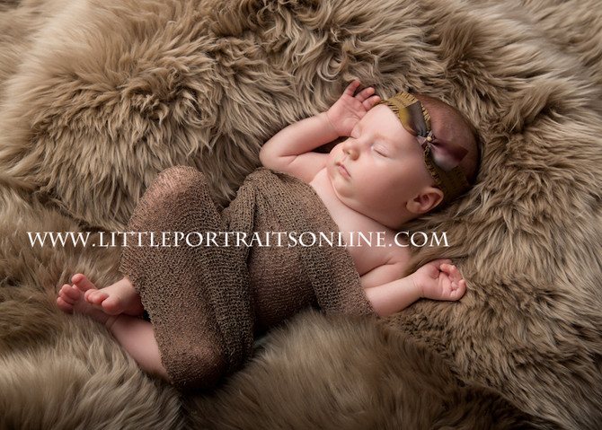 Emma | Lake County Newborn Photographer