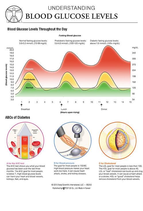 Blood Glucose Levels - Anatomical Wall Chart