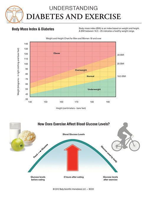 Diabetes and Exercise - Anatomical Wall Chart