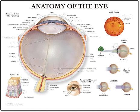 Eye - Desktop Mat