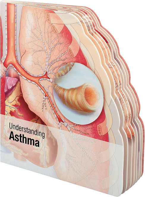 Understanding Asthma- Lenticular Book