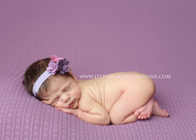 Newborn | Lake County Newborn Photographer