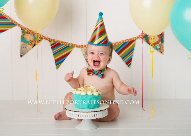 Cake Session | Lake County Baby Photographer
