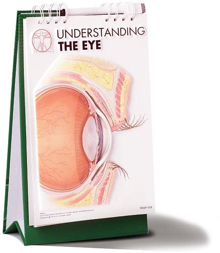 Understanding the Eye - Flip Book