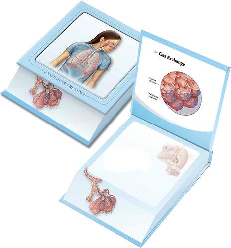Respiratory System - Memo pad