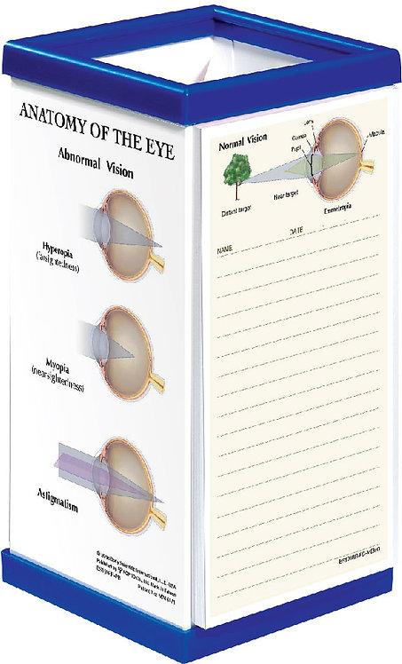 Anatomy of the Eye - Pen Box