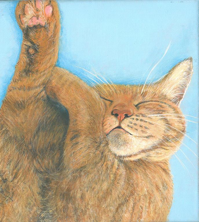Oscar ginger cat 2015.jpg