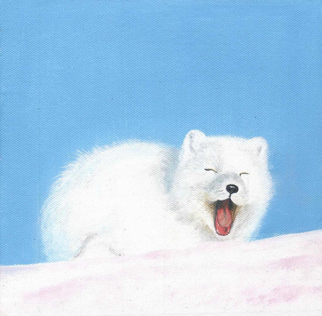SNOW FOX 2.jpg