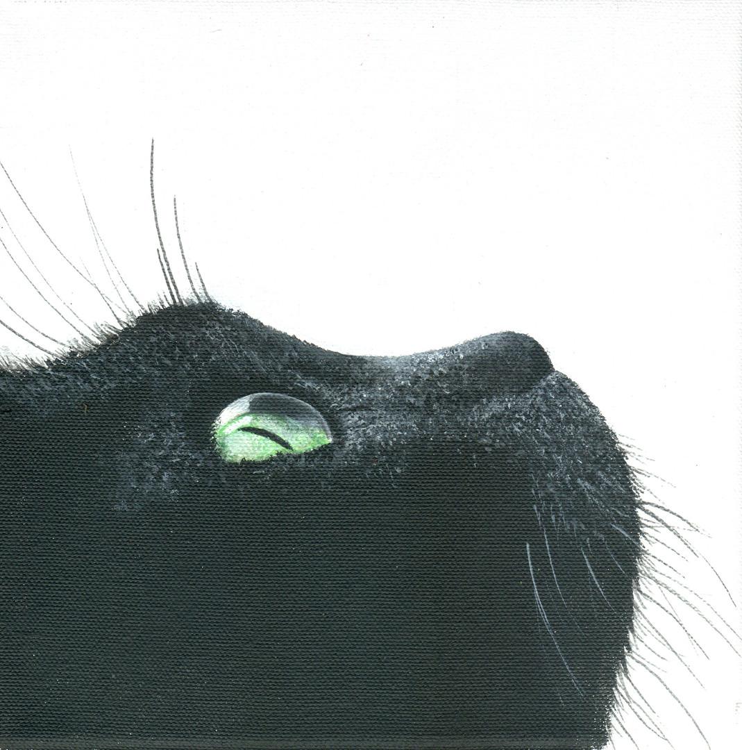 BLACK CAT PROFILE 2 2019.jpg