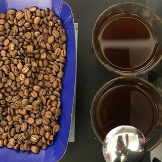 Kaffee Tasting Wildkaffee.jpeg