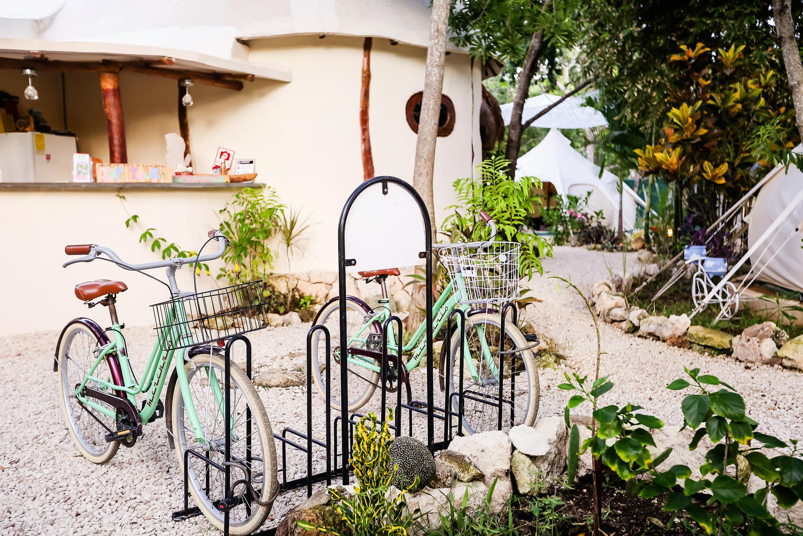 Reception and Bike Rental