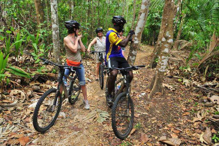 Bikes in Jungle.jpg