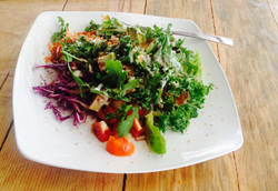 Organic Salads from our farm