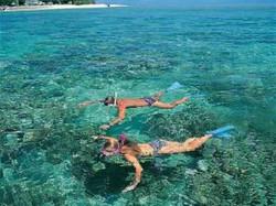 snorkel 3.jpg
