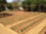 Agricultura Organica