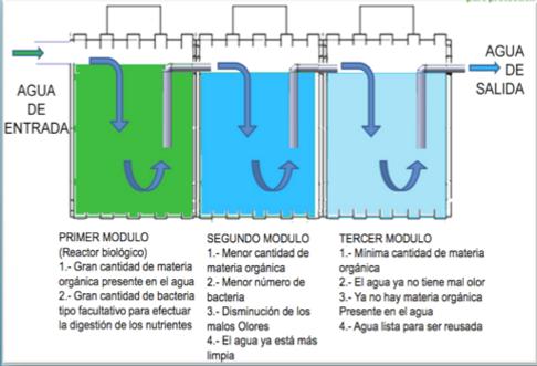 Biodigestores Green Beat