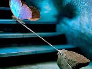 Se a vida não ficar mais fácil, Trate de ficar mais forte!
