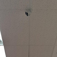 small bullet cam