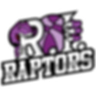 raptors logo finished.jpg