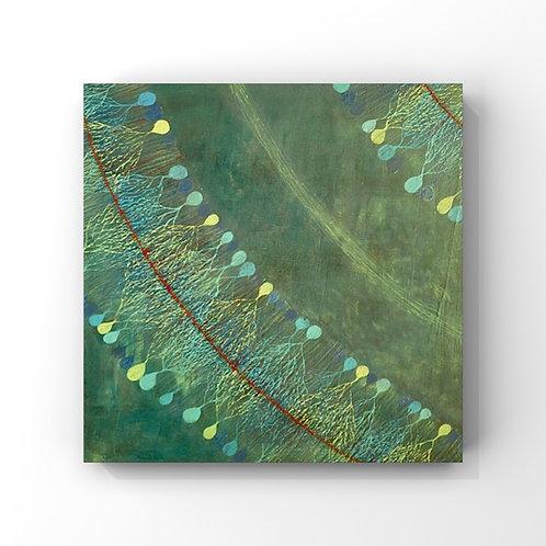 Cellules de Pukinje