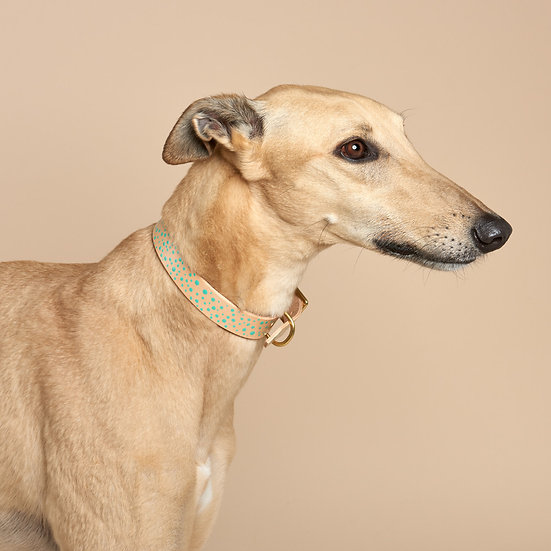 WHOLESALE: 'Freckle Face' Leather Collar