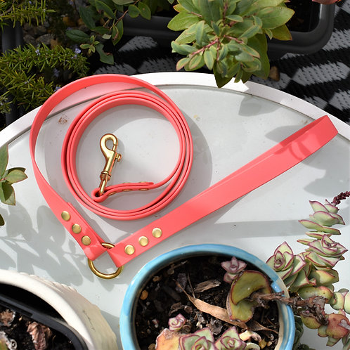 'Activewear' Leash in Coral Pink