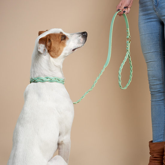 'Braid Envy' Leather Leash