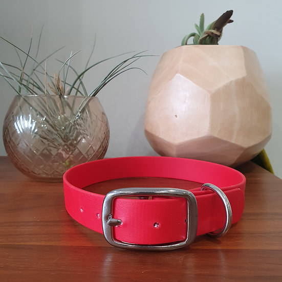 'Activewear' Collar in Red