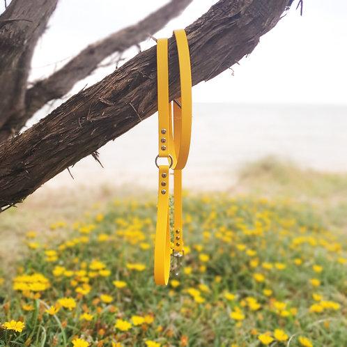 'Activewear' Leash in Sunflower