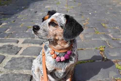 Plum Yum - Dog Jewellery