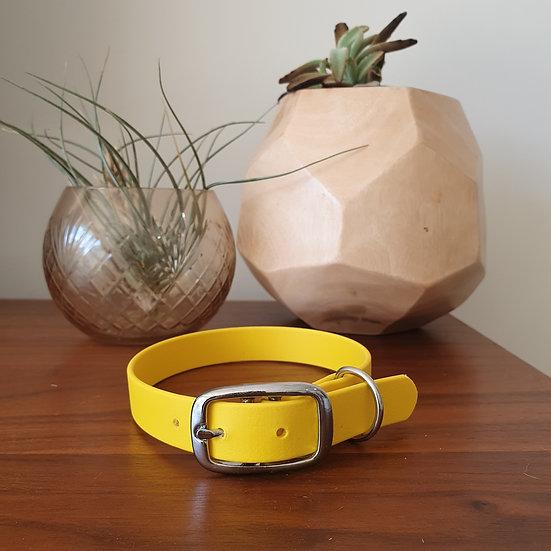 'Activewear' Collar in Sunflower