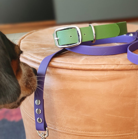 'Activewear' Collar in Olive