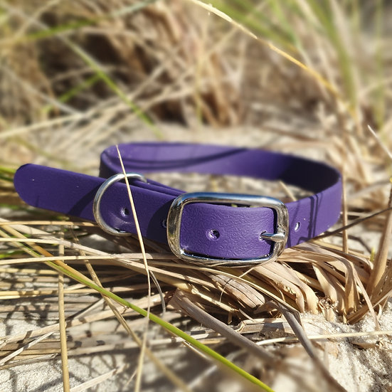 'Activewear' Collar in Violet
