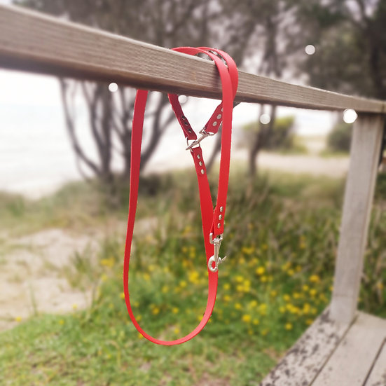 'Activewear' Leash in Red
