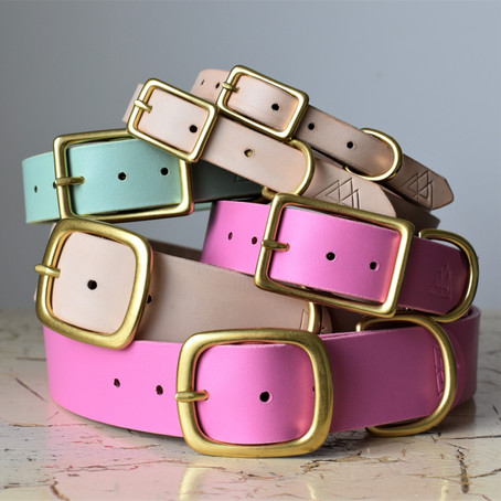 What Width Collar Should I Order???