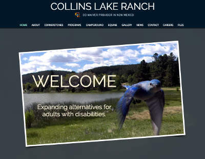 New Collins Lake Ranch website home page screenshot. It consists of a background of the lake, green grass and cattails surrounding it, a bluebird suspended in midflight looking at us. Title says WELCOME and subtitle says Expanding alternatives for adults with disabilities.